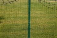 Varjena ograjna mreža