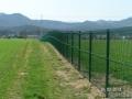 Panelna ograja stopničasto zelena