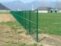 Panelne ograje zelene